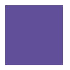 logo25trans